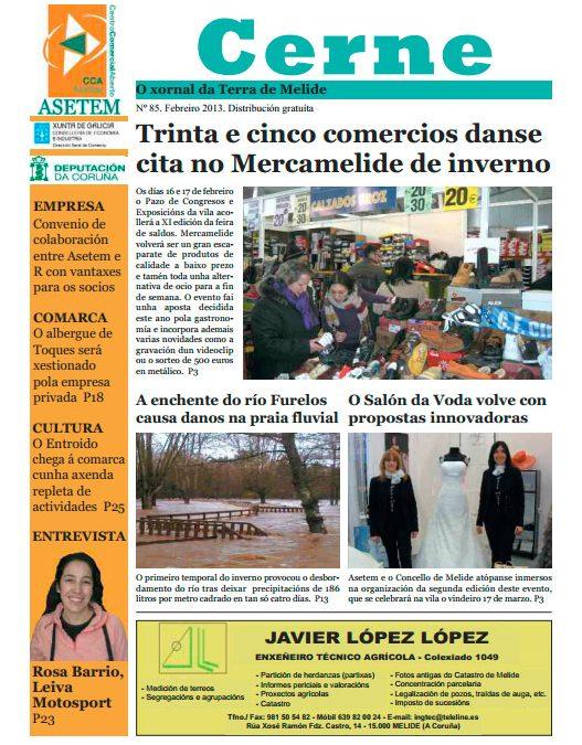 CERNE Nº 85 – FEBREIRO 2013